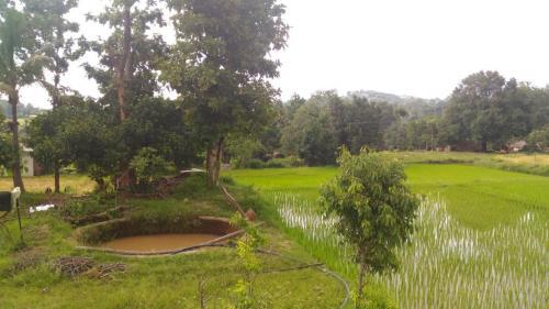 Village 2D